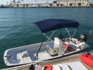 13 39 whaler key west boat rentals boating key west fl for Bimini fishing charters